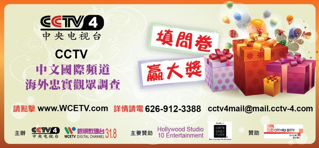 CCTV4_Survey2013